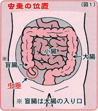 出典:http://www.minamitohoku.or.jp/